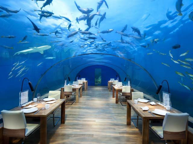 10-of-the-worlds-most-extraordinary-underwater-hotels_7