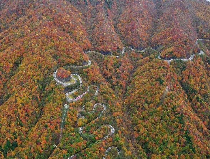 15-of-the-most-incredibly-beautiful-roads-in-the-world_12