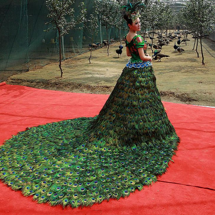 20 Most Creative Wedding Dresses You've Ever Seen_18