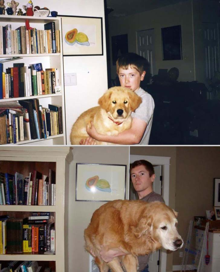 26-before-and-after-photos-of-baby-animals-growing-up_21