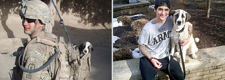 26-before-and-after-photos-of-baby-animals-growing-up_7