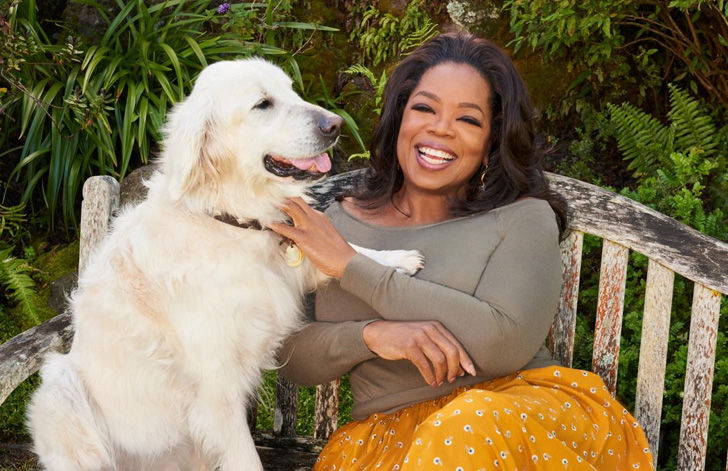35 Photos Of Oprah Winfrey's $90 Million Montecito Home_39