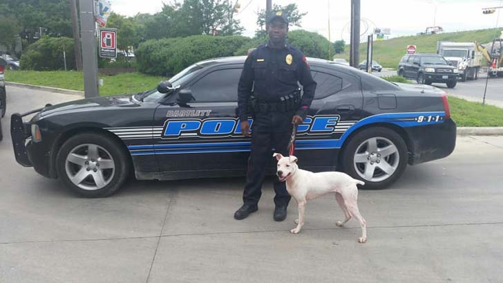police-officers-needed-cheaper-k9s-so-they-went-to-the-pound-and-adopted-the-dogs-no-one-wanted_1