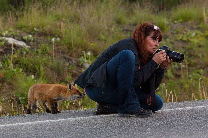 the-funniest-wildlife-photobombs-captured-by-photographers_6