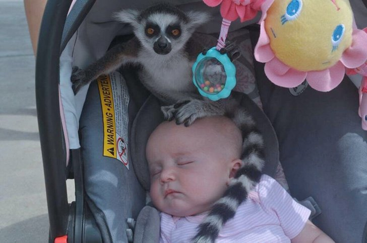 these-20-photos-perfectly-depict-what-parenting-really-looks-like_7