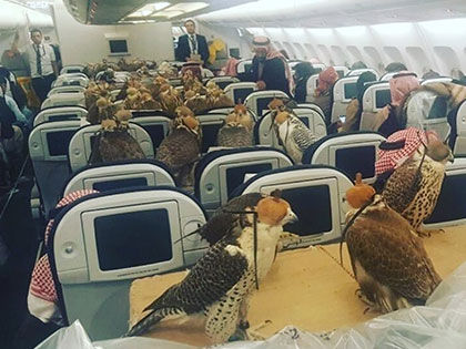 these-moments-at-the-airport-caused-a-giant-stir