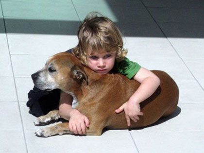 They Told The Little Boy His Dog Was Going To Be Put Down. His Words STUNNED Them